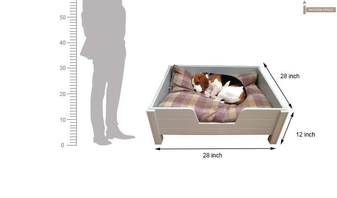Alias Dog Bed (White Finish)-2