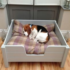 Alias Dog Bed (White Finish)