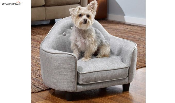Enjoyable Buy Jason Dog Sofa Bed Ivory Nude Online In India Wooden Street Unemploymentrelief Wooden Chair Designs For Living Room Unemploymentrelieforg