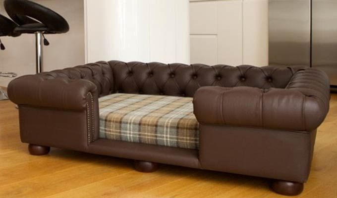 Lombard Dog Sofa Bed (Classic Brown)-4