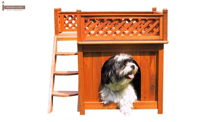 Lotus Dog House (Honey Finish)-1