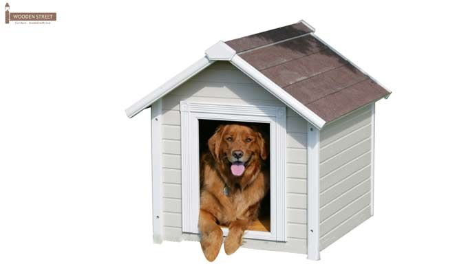 Maple Dog House (White Finish)-2