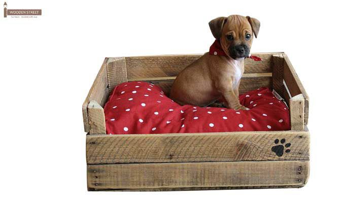Lomi Dog Bed (Natural Finish)-1