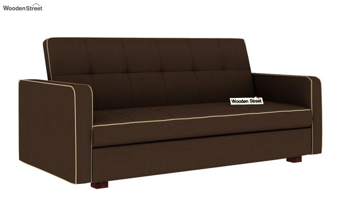 Clarin Fabric Storage Sofa Cum Bed (Classic Brown)-3