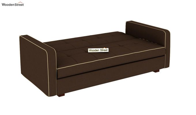 Clarin Fabric Storage Sofa Cum Bed (Classic Brown)-6
