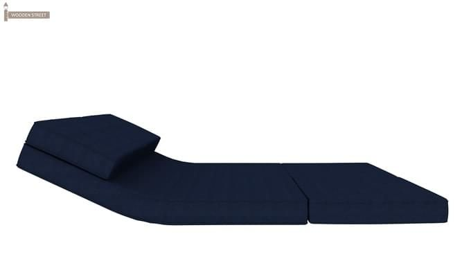 Coleman Futon Bed (Two Seater, Blue)-9
