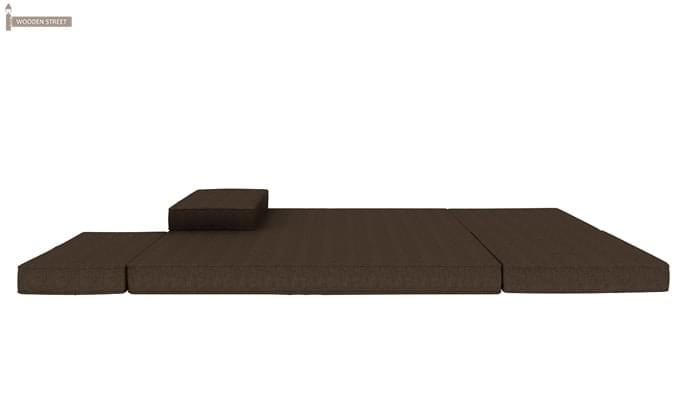 Coleman Futon Bed (Two Seater, Brown)-10