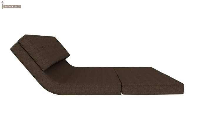 Coleman Futon Bed (Two Seater, Brown)-6