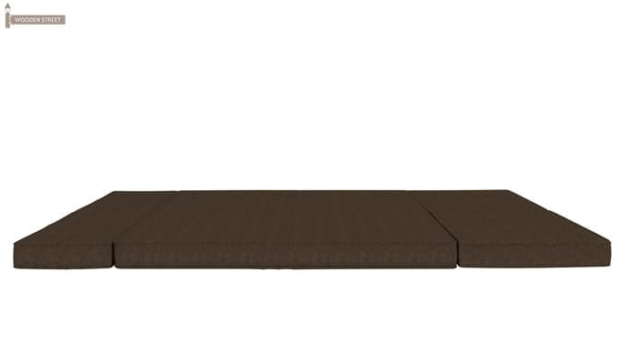 Coleman Futon Bed (Two Seater, Brown)-9