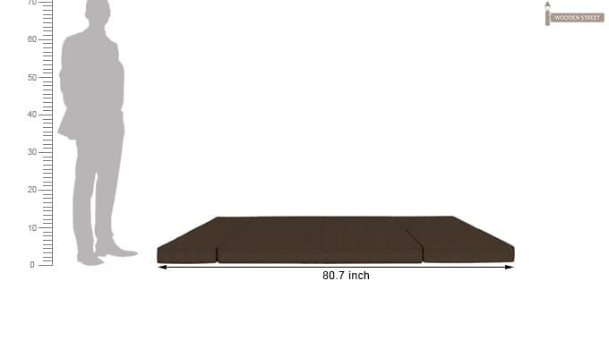 Coleman Futon Bed (Two Seater, Brown)-11