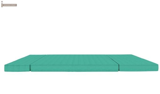 Coleman Futon Bed (Two Seater, Cyan)-9