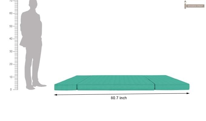 Coleman Futon Bed (Two Seater, Cyan)-12