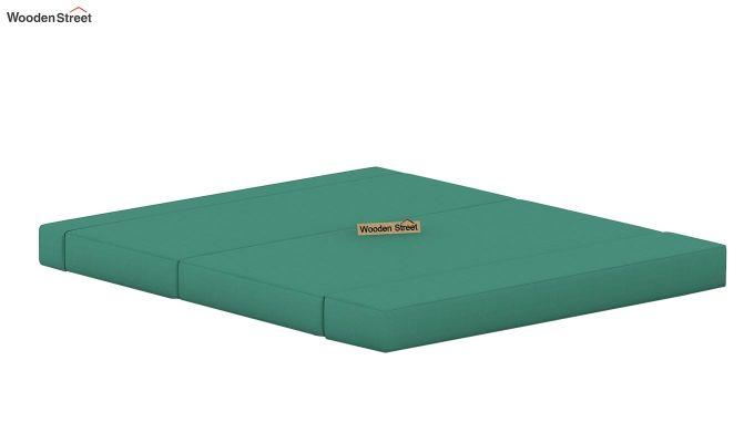 Voltz Fabric Sofa Cum Bed (Electric Turquoise)-5
