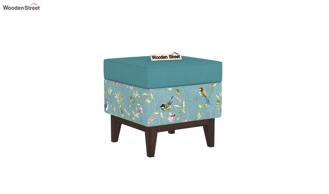Loco Stool with Storage (Bubble Robins)-2
