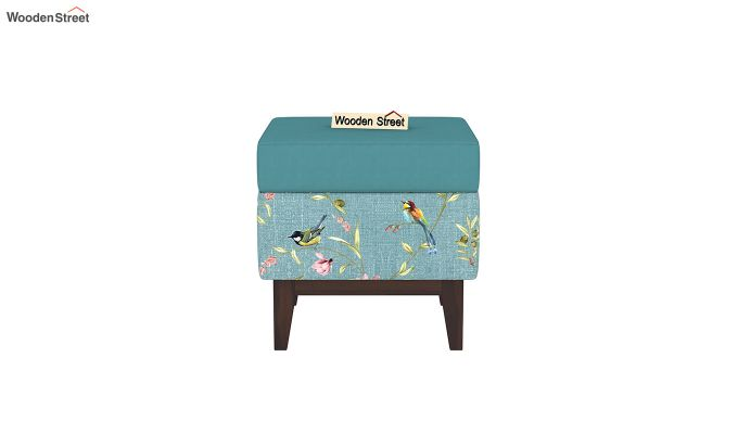 Loco Stool with Storage (Bubble Robins)-3