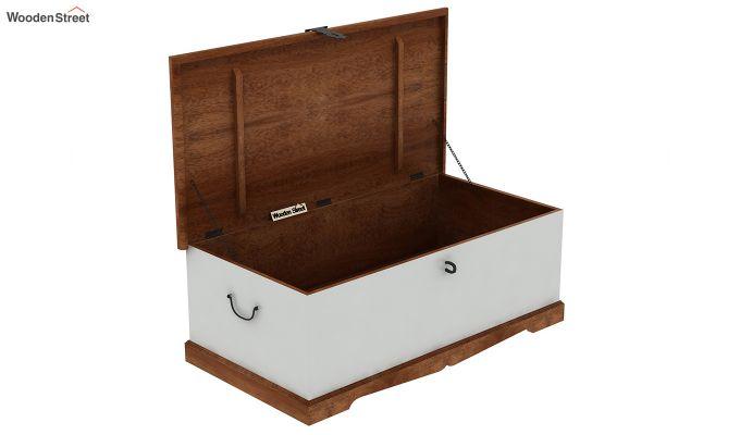 Paladin Trunk Box-6