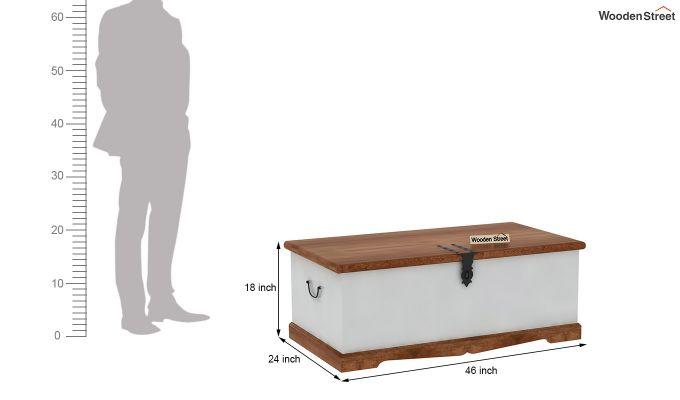 Paladin Trunk Box-7