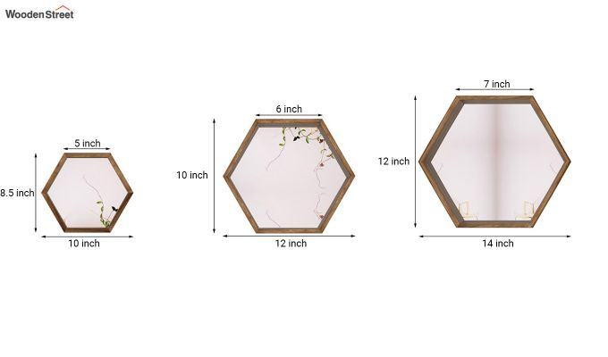 Bee Hive  Wall Shelve With Mirror-7