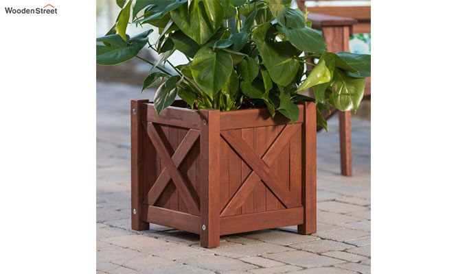 Fern Square Planter Box (Honey Finish)-1
