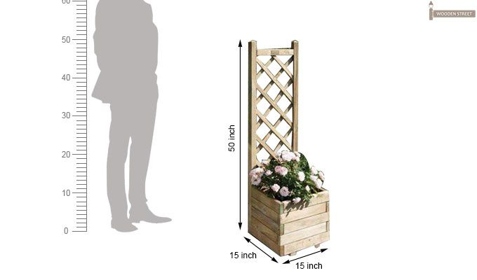 Owen Hanging Planters (Natural Finish)-4